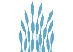 99063 Limpiapipas chenilla formas azul Innspiro
