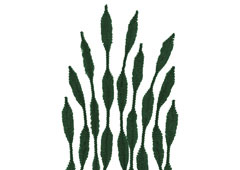 99064 Limpiapipas chenilla formas verde oscuro Innspiro