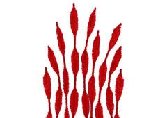 99065 Limpiapipas chenilla formas rojo Innspiro