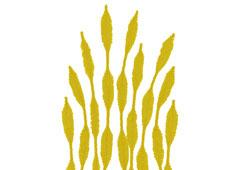 99066 Limpiapipas chenilla formas amarillo Innspiro