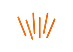 99573 Palos de polo madera naranja Innspiro