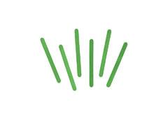 99574 Palos de polo madera verde Innspiro