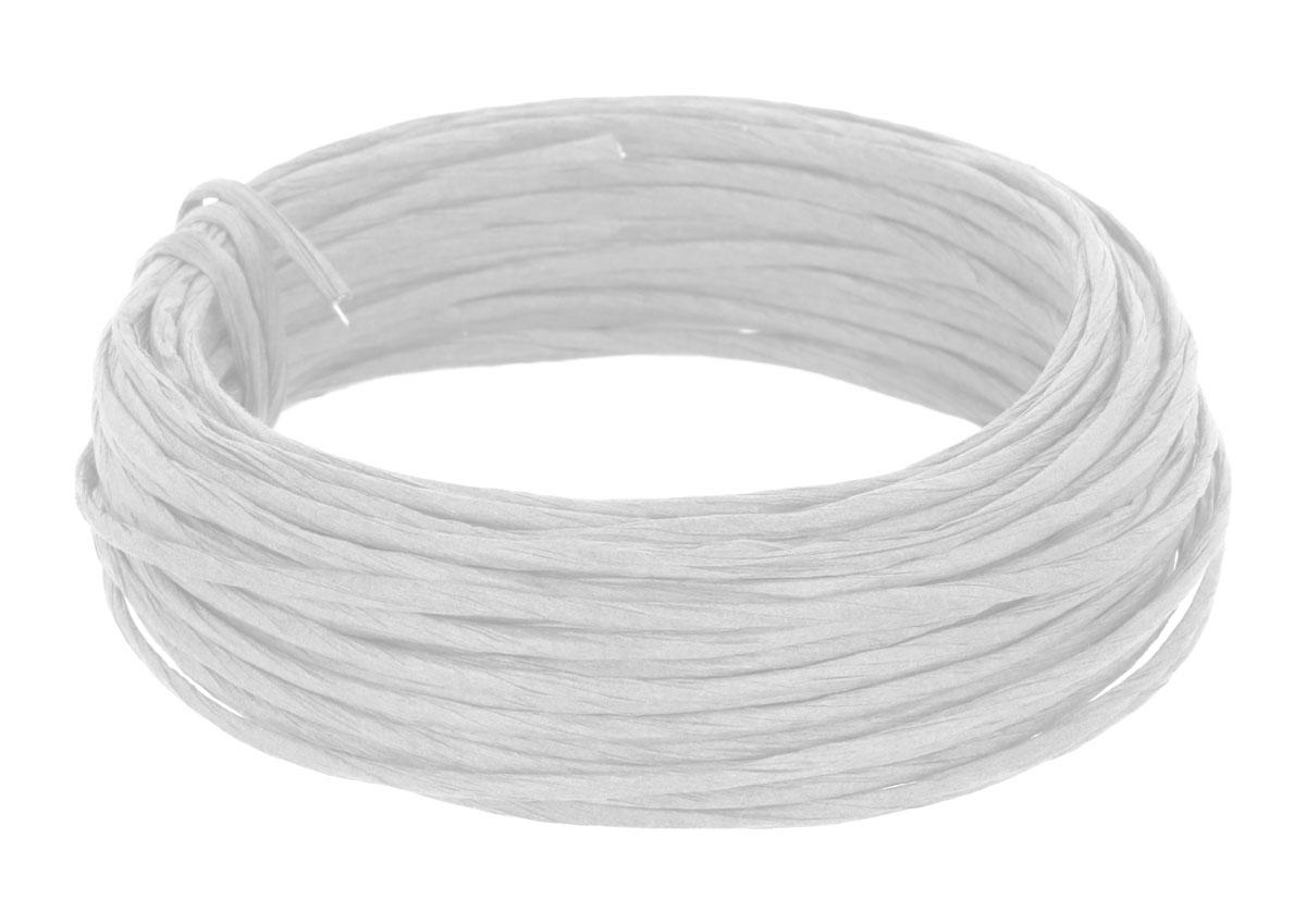 99801 Alambre recubierto de papel color blanco Innspiro
