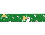 CL45321-12 Set 5 cintas adhesivas masking tape washi love letter verde Classiky s - Ítem2