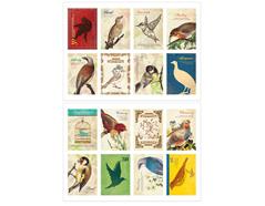 DASS10 Sellos papel adhesivos bird disenos surtidos Dailylike