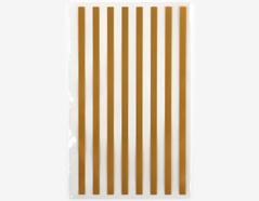 DCBS02 Sobres plastico transparenes gold stripe Dailylike