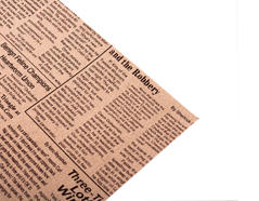 DFST02 Hoja adhesiva algodon newspaper brown Dailylike