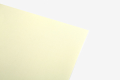 DLFS65 Hoja adhesiva algodon cream Dailylike