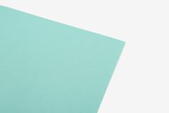 DLFS67 Hoja adhesiva algodon fresh mint Dailylike