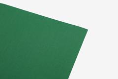 DLFS72 Hoja adhesiva algodon dazzling green Dailylike