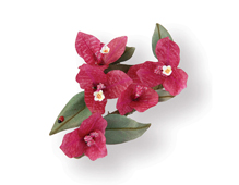 E658853 Set 9 troqueles THINLITS Flower Bougainvillea by Susan Tierney Cockburn Sizzix