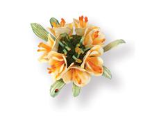 E658856 Set 5 troqueles THINLITS Flower Clivia by Susan Tierney Cockburn Sizzix