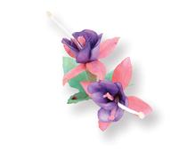E658858 Set 9 troqueles THINLITS Flower Fuchsia by Susan Tierney Cockburn Sizzix