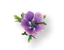 E658861 Set 9 troqueles THINLITS Flower Hardy Geranium by Susan Tierney Cockburn Sizzix