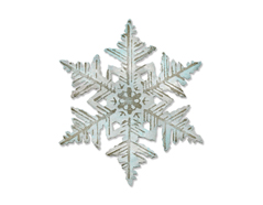 E660040 Set troquel BIGZ y TEXTURE FADES Layered snowflake by Tim Holtz Sizzix