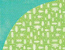 KNE-4156 KNEE HIGHS BOW TIES - 12X12 PAPER LEAP FROG 1u Basic Grey