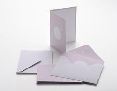 NI302R Set 6 tarjetas y 6 sobres Coleccion Rose NIO