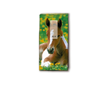 P01245 PANUELOS TT FOAL 11X5 5cm 10u Paper Design