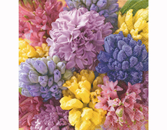 P200240 Servilletas papel Colourful hyacinths 33x33cm 20u Paper Design