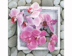 P200245 Servilletas papel Orchids in frame 33x33cm 20u Paper Design