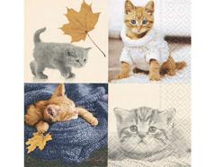P200378 Servilletas papel Autumn cats 33x33cm 20u Paper Design