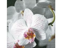 P21037 Servilletas papel beautiful orchid Paper Design