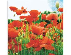 P21156 Servilletas papel field of poppies Paper Design