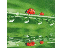 P21659 Servilletas papel ladybugs on tour Paper Design