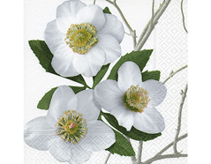 P600046 Servilletas papel Christmas rose Paper Design