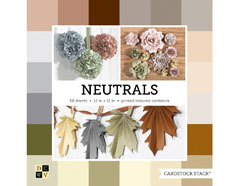 PS-016-00030 Set 58 cartulinas Cardstock Stack Neutrals DCWV