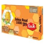 JALEA REAL FRESCA FORTE 1000 MG 2O AMPOLLAS