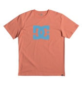 DC SHOES STAR SS M TEES XMMB