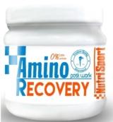 NUTRISPORT AMINO RECOVERY 260 GR