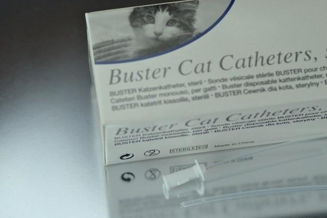 Sonda Buster 1,3mm. Sonda Uretral Gato