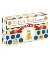 ROBIS REINA REAL JALEA REAL DEFENSAS 20 AMPOLLAS BEBIBLES