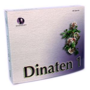 Dinaten 1 Dinadiet