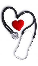 Sistema circulatorio y cardiovascular