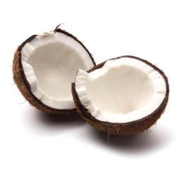 Coco ecológico 1 unidad