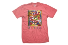 Shirt DGK Canvas tee DT 4046 Brutalzapas