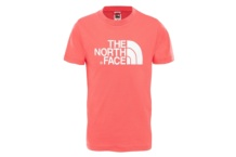 Camiseta The North Face S7S Easy Nino T0A3P74CK Brutalzapas