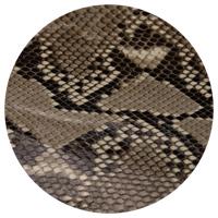 Python && Adria Python