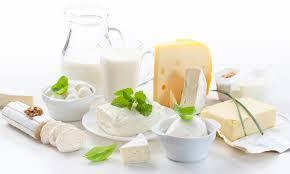 Lácteos y sustitutivos