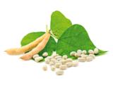 LECIGRAN LECITINA DE SOJA IP 500 GR NO GMO